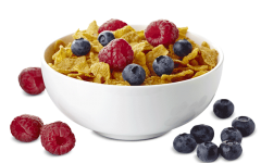 bowl-flakes-berries